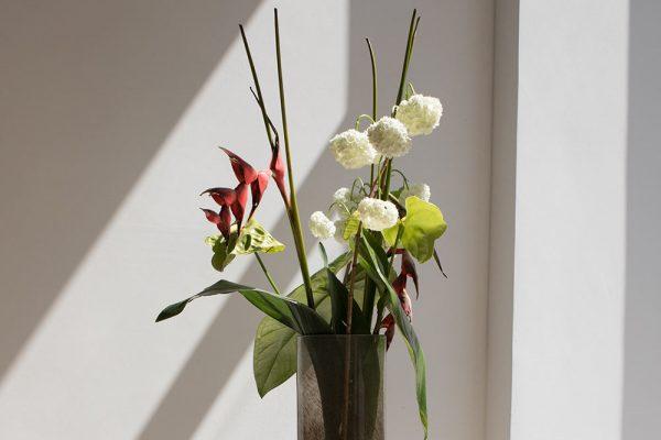 Frische Blumen in der Zahnarztpraxis Dr. Quidenus in Wien.
